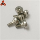 Screw Factory Supply Non-standard Special Step Screws